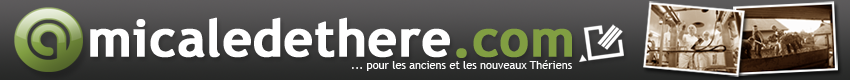 logo-amicale-there